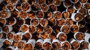 Троянски полицаи иззеха 84 броя запечатани найлонови пликове с тютюн без бандерол в с. Гумощник